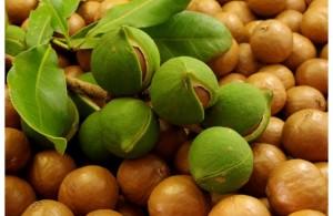 arganovoe-maslo
